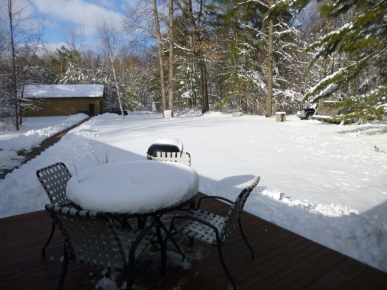 Snow Day - 2-25-2016